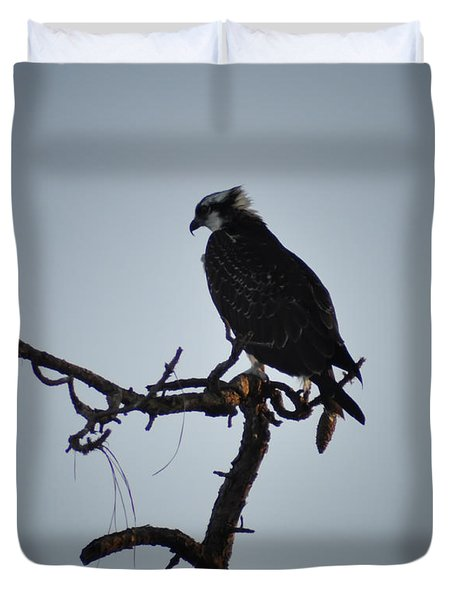 The Osprey Duvet Cover by Bill Cannon