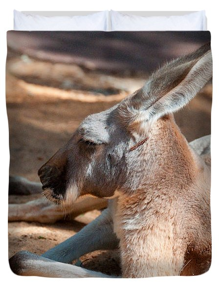 The Resting Roo Duvet Cover by Rob Hawkins