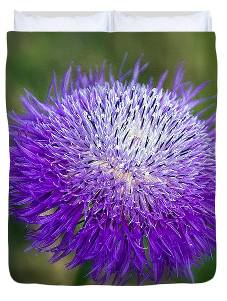 Thistle I Duvet Cover by Tamyra Ayles