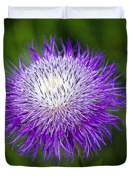 Thistle II Duvet Cover by Tamyra Ayles