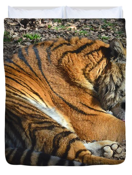 Tiger Behavior Duvet Cover by Sandi OReilly