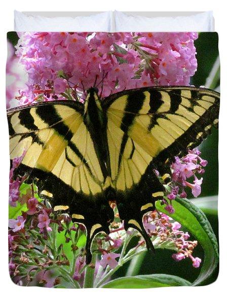 Tiger Swallowtail Butterfly Duvet Cover by Randi Shenkman