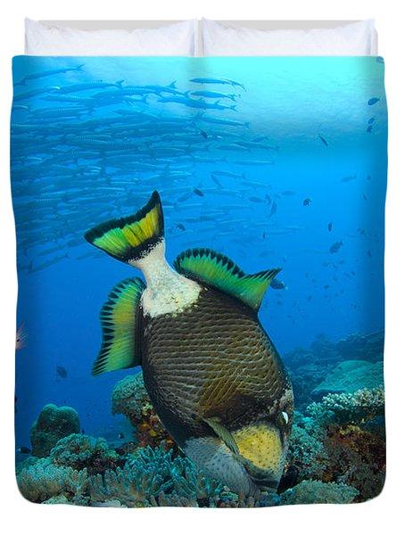 Titan Triggerfish Picking At Coral Duvet Cover by Steve Jones
