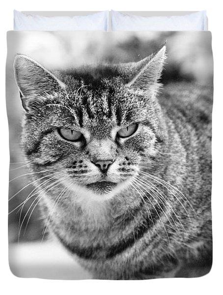 Tomcat Duvet Cover by Frank Tschakert