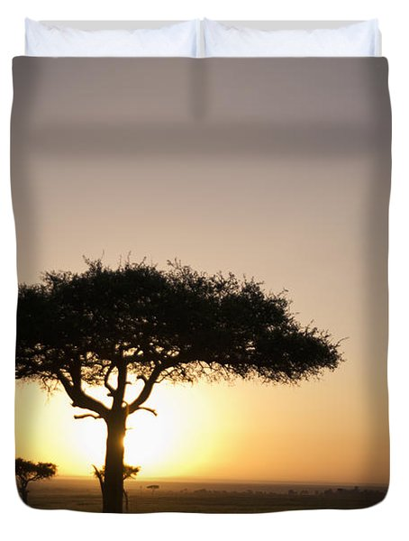 Trees On The Savannah With The Sun Duvet Cover by David DuChemin