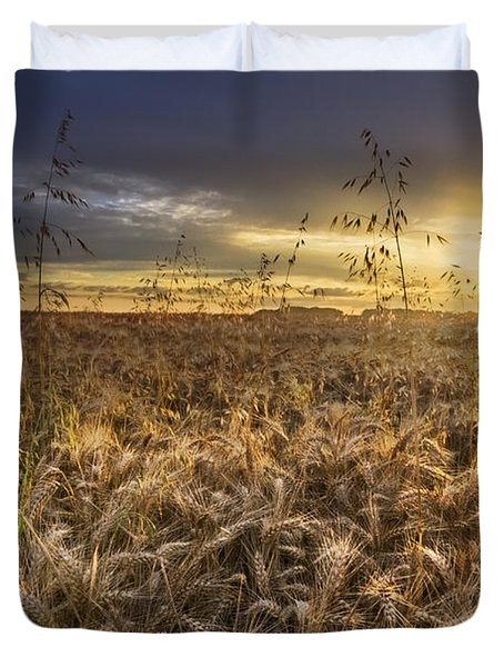 Tumble Wheat Duvet Cover by Debra and Dave Vanderlaan
