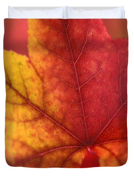 Turn Turn Turn Duvet Cover by Kathy Yates