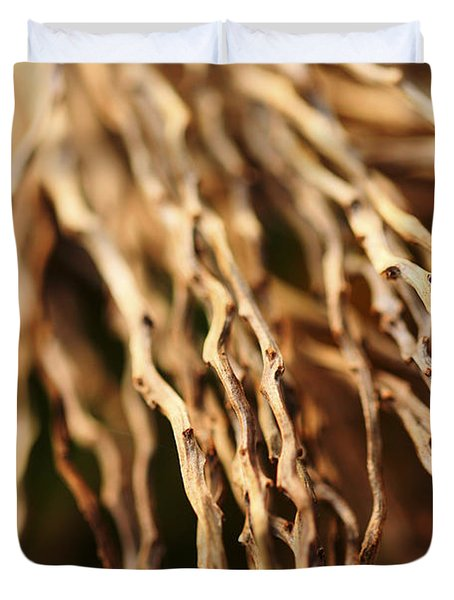 Twigs Duvet Cover by Cheryl Young