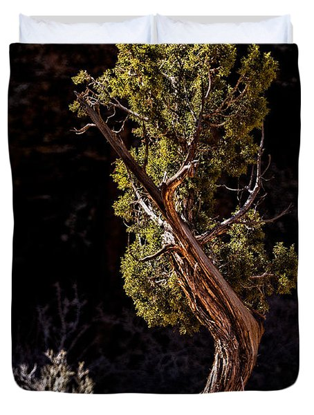 Twisted Reach Duvet Cover by Christopher Holmes