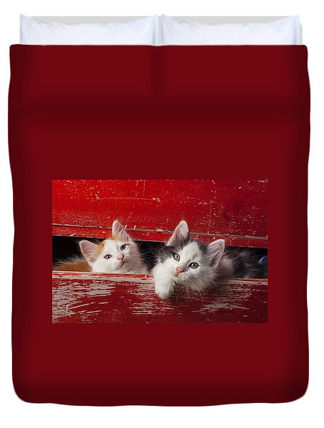 Two Kittens In Red Drawer Duvet Cover by Garry Gay