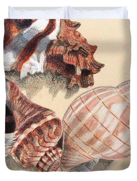 Vertical Conch Shells Duvet Cover by Glenda Zuckerman