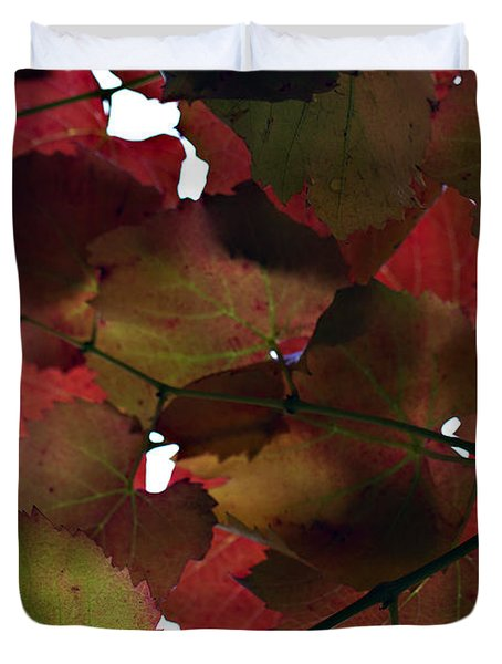 Vine Leaves Duvet Cover by Douglas Barnard
