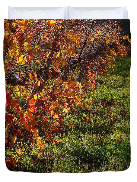 Vineyard 13 Duvet Cover by Xueling Zou