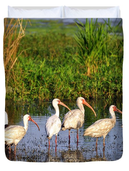 Wading Ibises Duvet Cover by Al Powell Photography USA