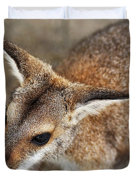 Wallaby Portrait Duvet Cover by Kaye Menner