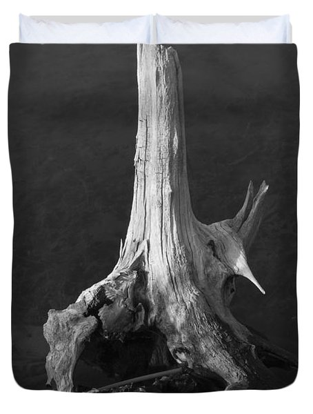 Weathered Stump Duvet Cover by David Gordon