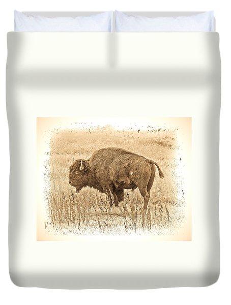 Western Buffalo Duvet Cover by Steve McKinzie
