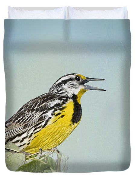 Western Meadowlark Duvet Cover by Betty LaRue