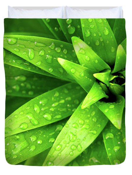 Wet Foliage Duvet Cover by Carlos Caetano