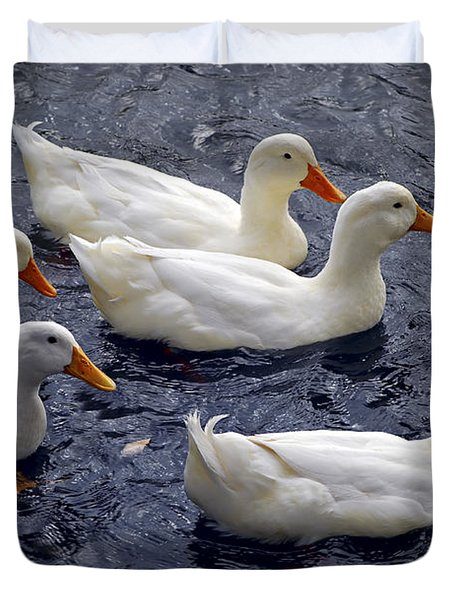 White ducks Duvet Cover by Elena Elisseeva