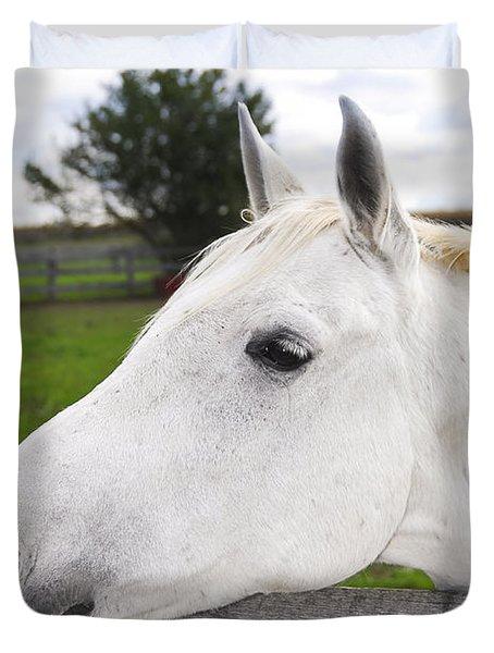 White horse Duvet Cover by Elena Elisseeva