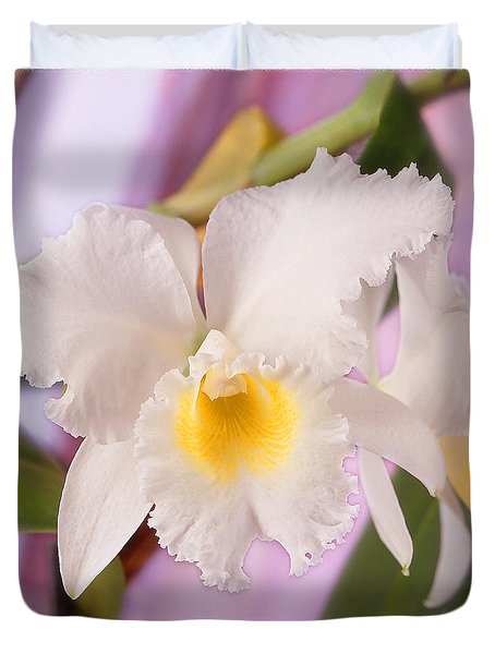 White Orchid Duvet Cover by Mike McGlothlen