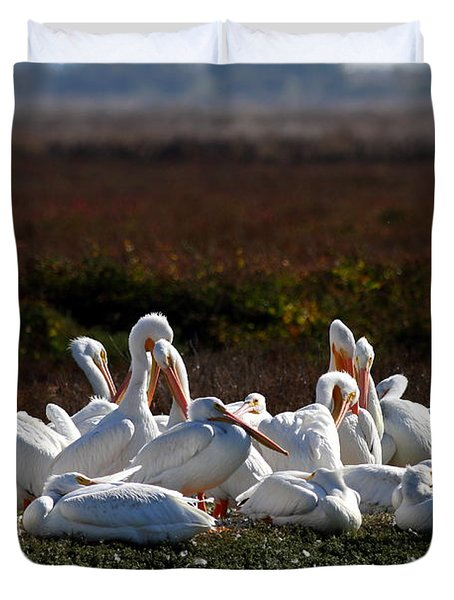 White Pelicans Duvet Cover by Wingsdomain Art and Photography