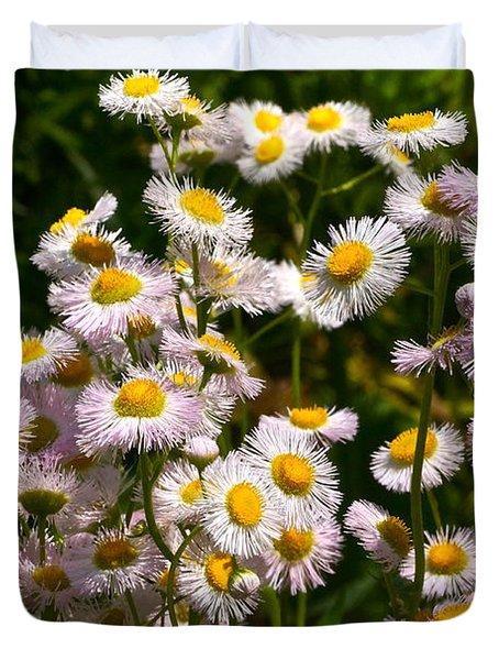 Wild Daisies Duvet Cover by Byron Varvarigos