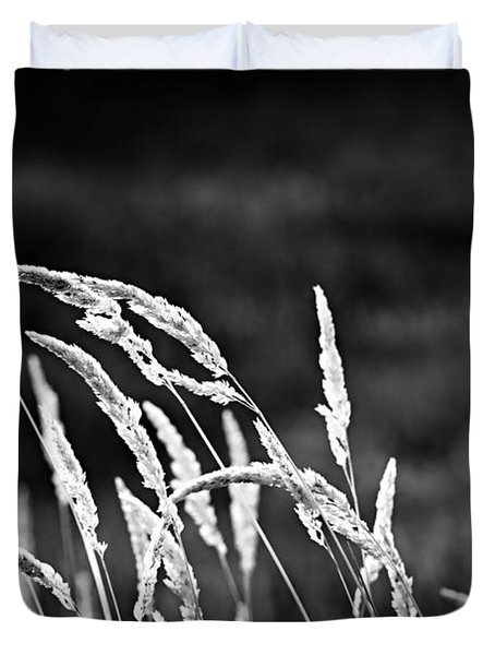 Wild Grass In Black And White Duvet Cover by Elena Elisseeva