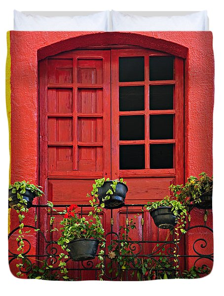 Window on Mexican house Duvet Cover by Elena Elisseeva