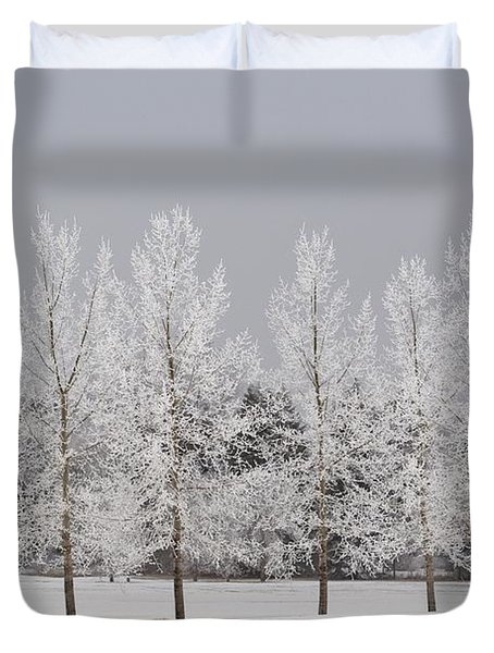 Winter, Calgary, Alberta, Canada Duvet Cover by Michael Interisano