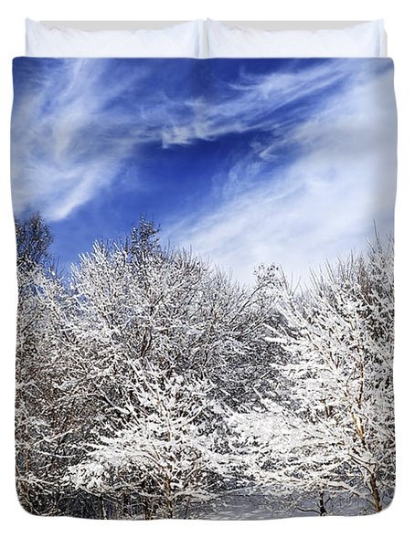 Winter Forest Covered With Snow Duvet Cover by Elena Elisseeva