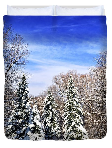 Winter forest with snow Duvet Cover by Elena Elisseeva