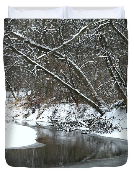 Winter In The Park Duvet Cover by Kay Novy