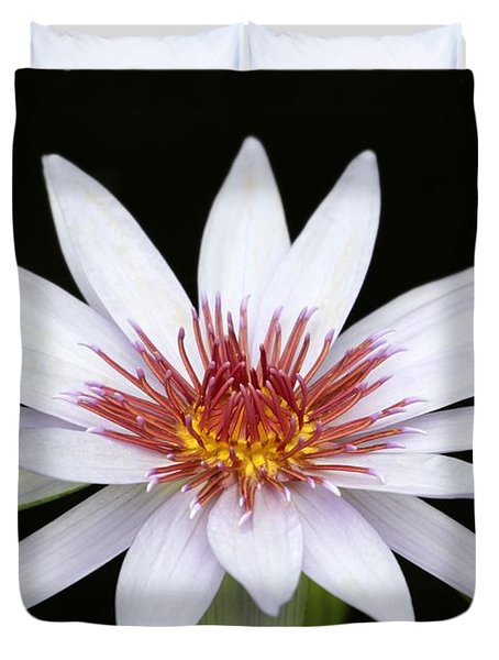 Wonderful White Water Lily Duvet Cover by Sabrina L Ryan