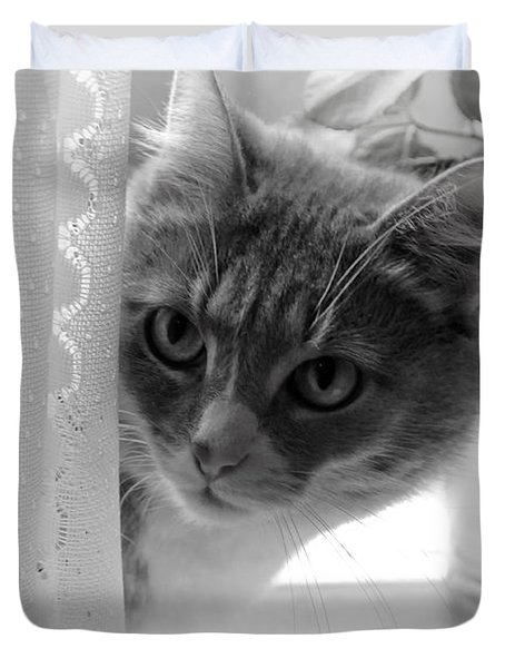 Wondering. Kitty Time Duvet Cover by Jenny Rainbow