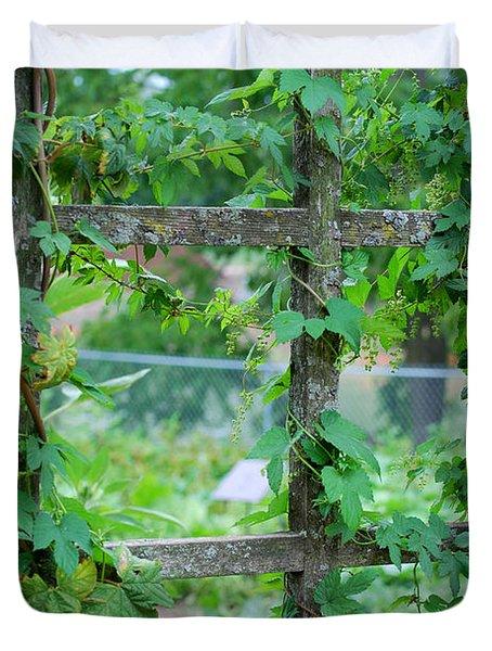 Wooden Trellis and Vines Duvet Cover by Nancy Mueller