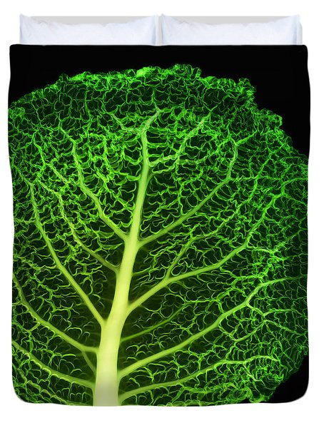 X-ray Of Cabbage Leaf Duvet Cover by Ted Kinsman