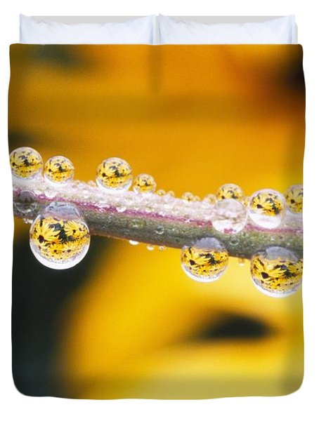 Yellow Flowers Reflected In Dew Drops Duvet Cover by Natural Selection Craig Tuttle