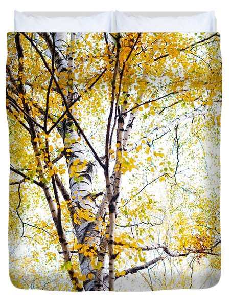 Yellow Lace Of The Birch Foliage  Duvet Cover by Jenny Rainbow