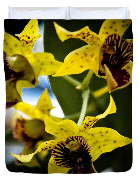 Yellow Orchids Duvet Cover by David Patterson