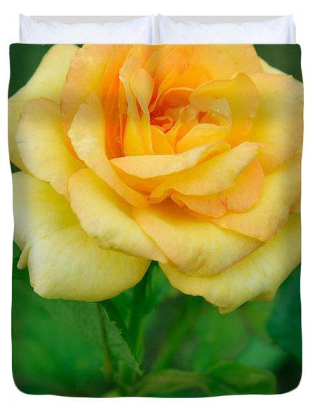 Yellow Rose Duvet Cover by Atiketta Sangasaeng