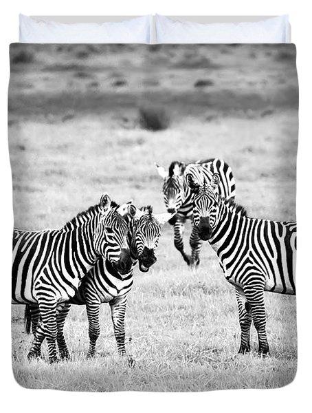 Zebras In Black And White Duvet Cover by Sebastian Musial