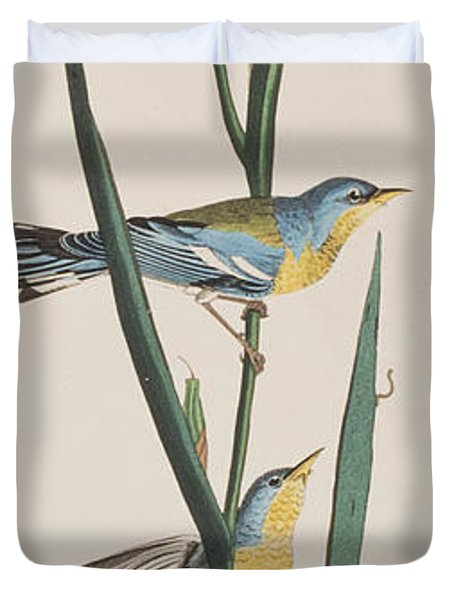 Blue Yellow-backed Warbler Duvet Cover by John James Audubon