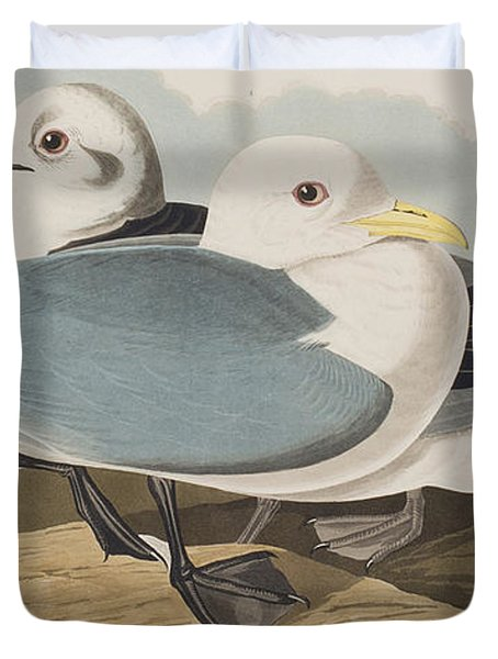 Kittiwake Gull Duvet Cover by John James Audubon