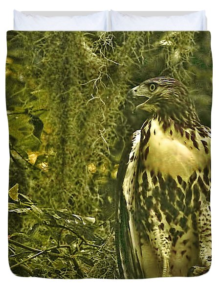 Red-tail Posing Duvet Cover by Phill Doherty