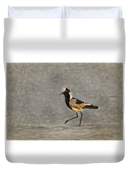 Black-winged Lapwing Art Duvet Cover by Kay Brewer