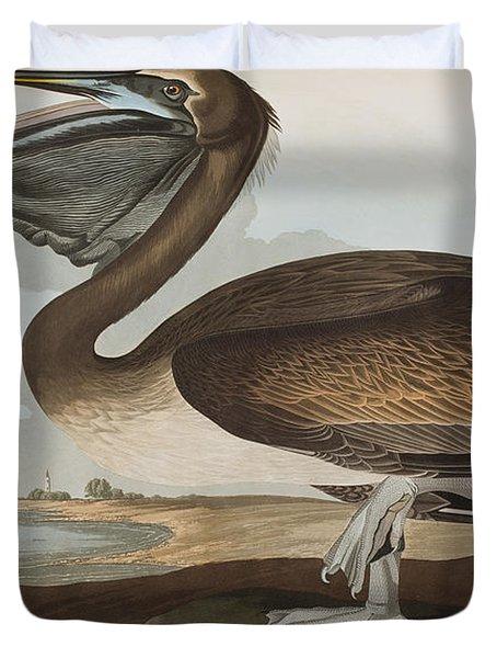 Brown Pelican Duvet Cover by John James Audubon