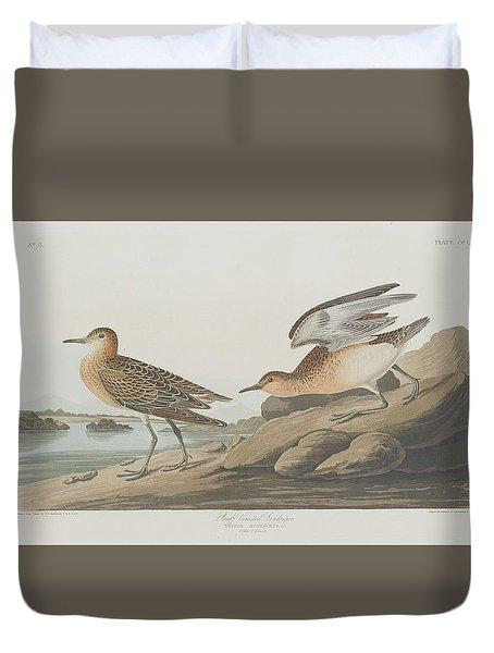 Buff-breasted Sandpiper Duvet Cover by John James Audubon