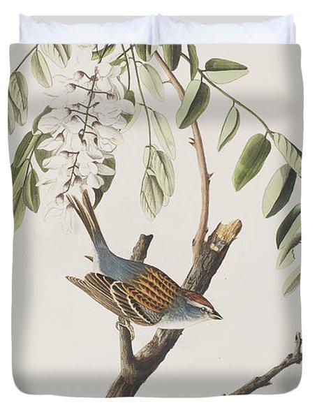 Chipping Sparrow Duvet Cover by John James Audubon